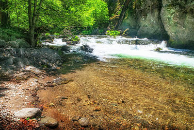 Photograph - Deer Creek Trout Pool by Frank Wilson