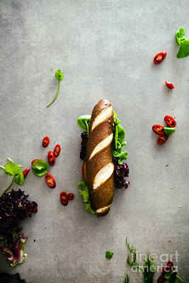 Deli Sandwich With Vegetables Art Print by Mythja Photography