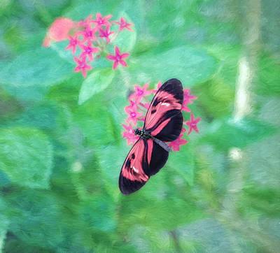 Photograph - Delicate Beauty by Kim Hojnacki