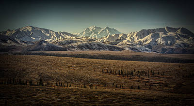 Photograph - Denali  by Chris Multop