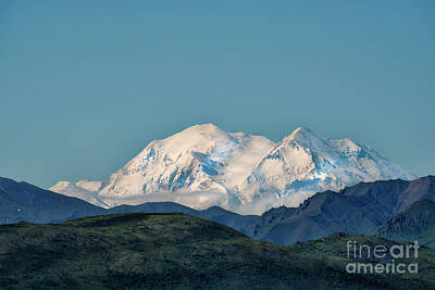 Photograph - Denali by David Arment