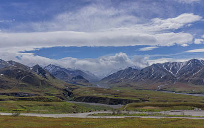 Photograph - Denali National Park - Alaska by David Warrington