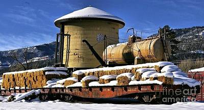 Photograph - Denver And Rio Grande Water Tank In Hermosa by William Schlabach