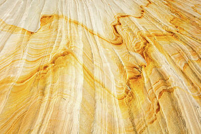 Photograph - Desert Gold by Johnny Adolphson