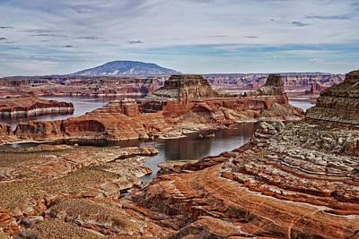 Photograph - Desert Oasis by Leda Robertson