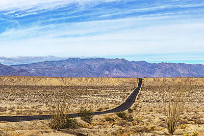 Photograph - Desert Road 4 by Peter Tellone