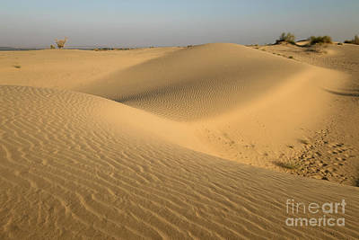 Photograph - Desert by Yew Kwang