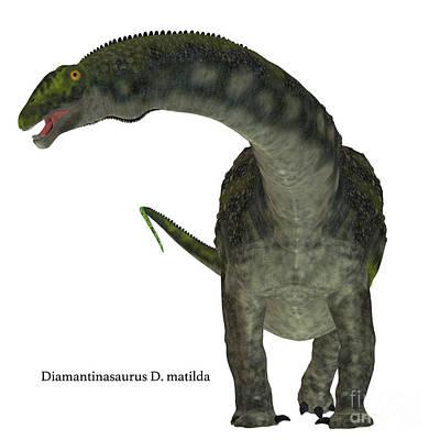 Diamantinasaurus Dinosaur On White Art Print