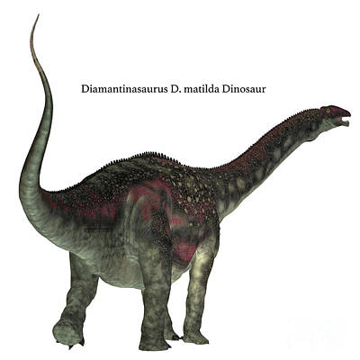 Diamantinasaurus Dinosaur Tail Art Print