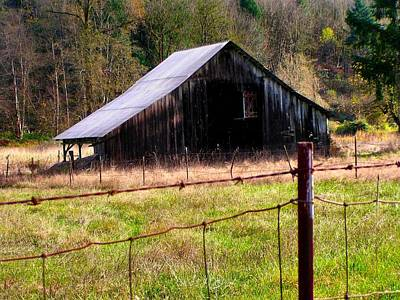 Photograph - Dilapidated Barn by Sadie Reneau