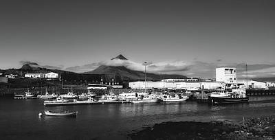 Photograph - Djupivogur Harbor, Iceland by Mountain Dreams