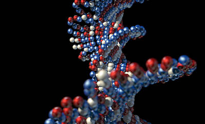 Molecule Digital Art - Dna Atom Stem by Allan Swart