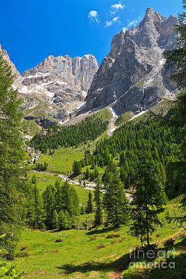 Photograph - Dolomiti - Contrin Valley by Antonio Scarpi