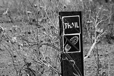 Photograph - Don't Tread Here by Daniel Woodrum