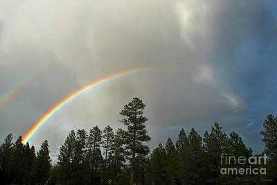 Photograph - Double Rainbow by David Arment