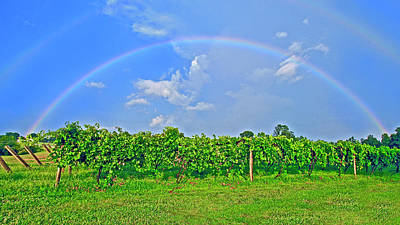 Photograph - Double Rainbow Vineyard, Smith Mountain Lake by The American Shutterbug Society