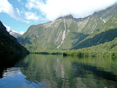 Photograph - Doubtful Sound, New Zealand No. 3 by Sandy Taylor