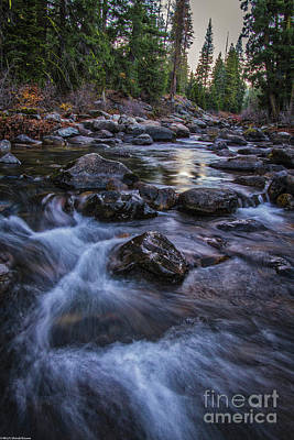 Photograph - Down River by Mitch Shindelbower