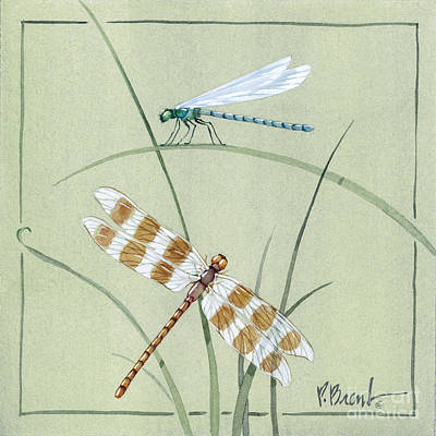 Dragonflies Painting - Dragonfly Damselfly by Paul Brent