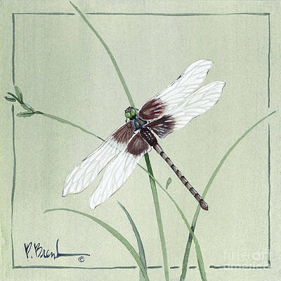Dragonflies Painting - Dragonfly by Paul Brent