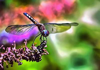 Painting - Dragonfly by Tracey Harrington-Simpson