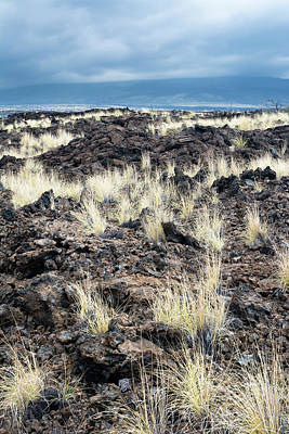 Photograph - Dried Lava Flow by Joe Belanger