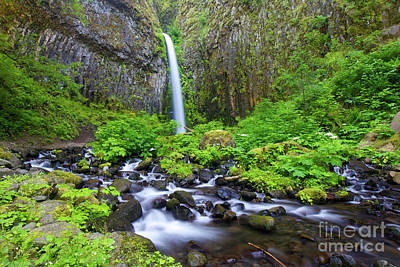 Photograph - Dry Creek Falls by Bruce Block