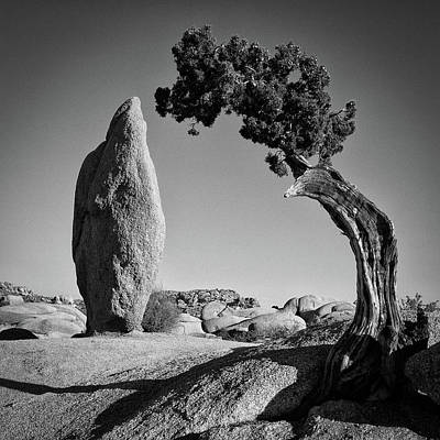 Photograph - Duality by Ryan Weddle