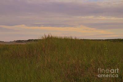 Photograph - Dunes by Lennie Malvone
