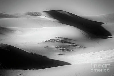 Photograph - Dunes by Scott Kemper