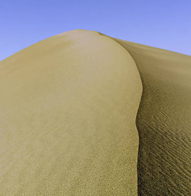 Winter Animals Rights Managed Images - Dunes Three Royalty-Free Image by Paul Basile