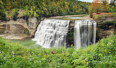 Photograph - Early Autumn Middle Falls And Wildflowers by Karen Jorstad