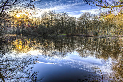 Photograph - Early Morning Forest Pond by David Pyatt