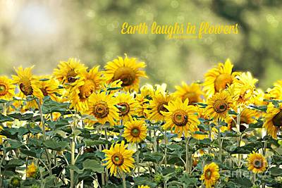 Photograph - Earth Laughs In Flowers by Lila Fisher-Wenzel