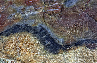 Photograph - Earth Portrait 000-205 by David Waldrop