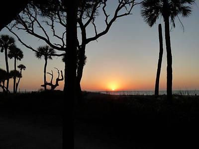Photograph - Edisto Island - Rising Sun by Joel Deutsch