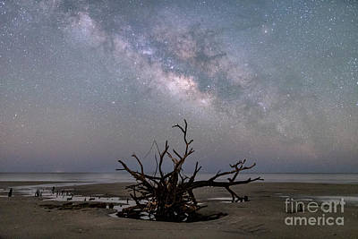 Photograph - Edisto Island Milky Way by Robert Loe