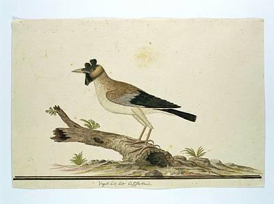 Een Mannetje Art Print by Robert Jacob Gordon