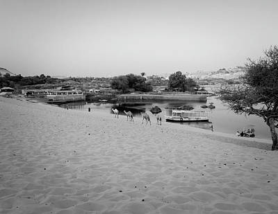 Black And White Photograph - Egypt by Silvia Bruno