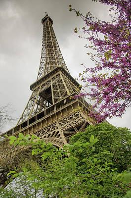 Spring Scenery Photograph - Eiffel Tower by Carlos Caetano