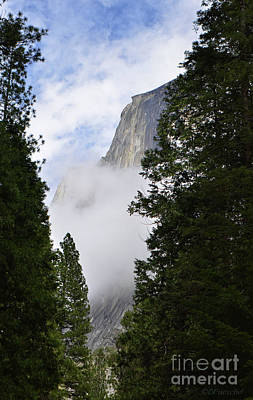 Photograph - El Capitan by Debby Pueschel
