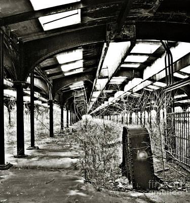 Photograph - Ellis Island  by Raymond Earley