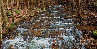 Photograph - Emory Gap Branch by Paul Mashburn
