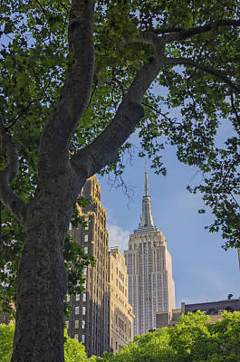 Photograph - Empire State Building by Marianne Campolongo