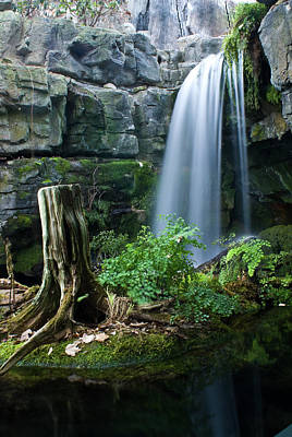 Photograph - Enchanted Waterfall by Douglas Barnett
