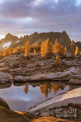 Photograph - Enchantments Golden Fall Colors by Mike Reid