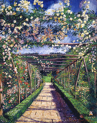 English Garden Painting - English Rose Trellis by David Lloyd Glover