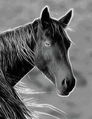 Photograph - Equine  by Steve McKinzie