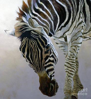 Equus Burchelli 2 Art Print