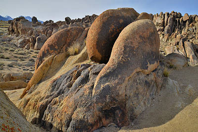 Animal Watercolors Juan Bosco - Evening in Alabama Hills by Ray Mathis
